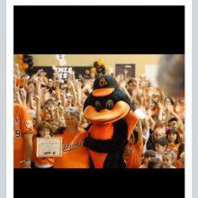 Orange School 2012