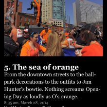 Sea Of Orange The Sun1