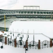 opacy-in-blizzard